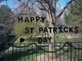 St. Patrick's Day: Indy style